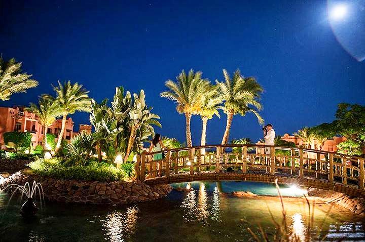 Hotel-Charmillion-Sea-Life-Resort-Sharm-El-Sheikh-Egipt-Party-Trip-8