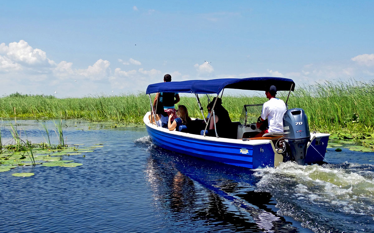 Vacanta de grup Delta Dunarii by PARTY TRIP Travel Agency